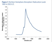 Northern Hemisphere Atmospheric Radiocarbon Levels 1940 to 2003 A.D.