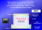 Still image linking to Animation Explaining Slab-Gel Electrophoresis